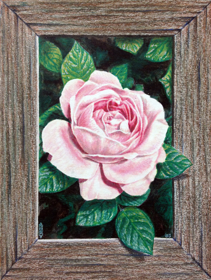 "Framed rose  5"" x 7"" Watercolor on paper  2003"
