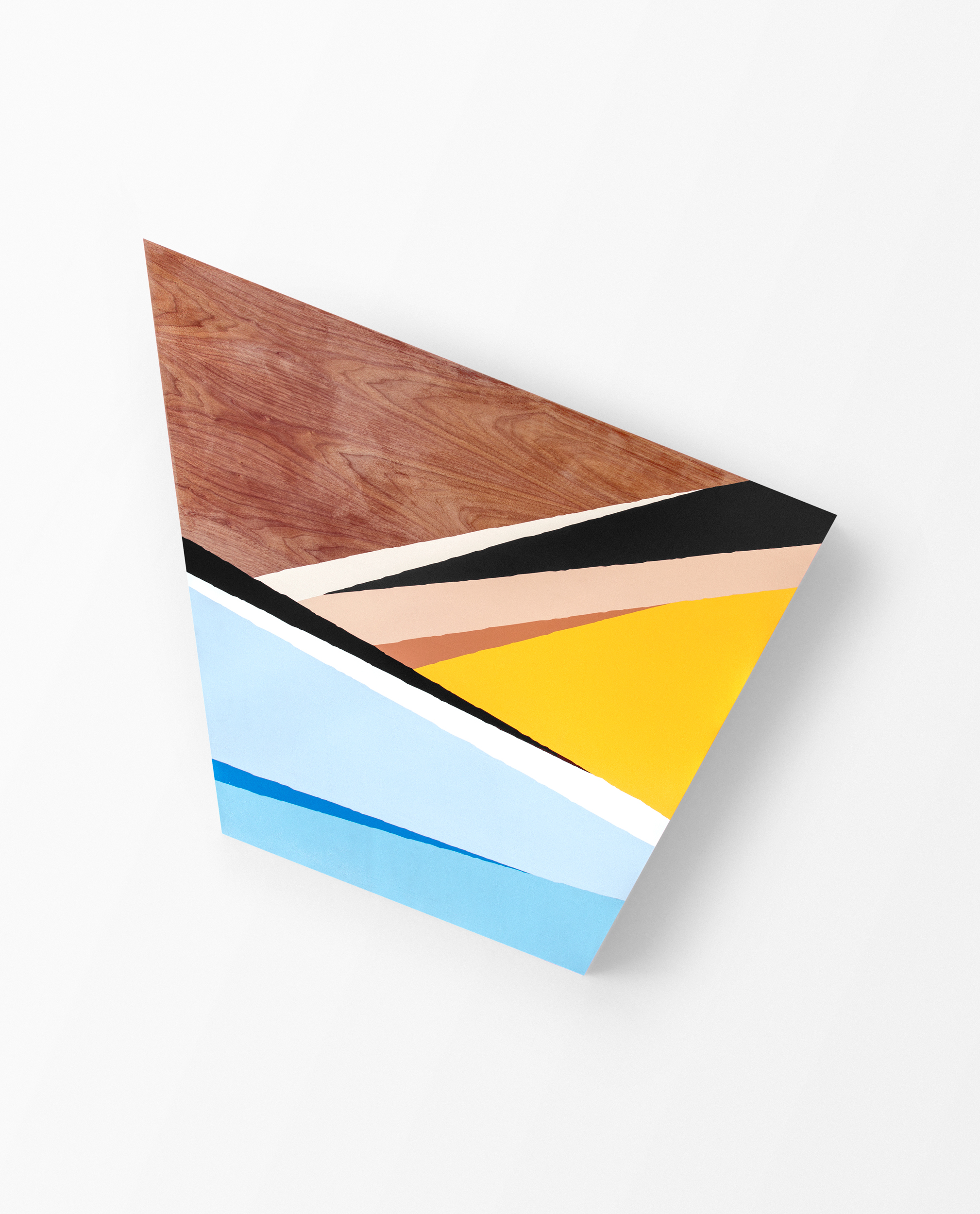 Max, 2016 Spray paint and polyurethane on walnut panel 68 x 48 x 2.5 inches