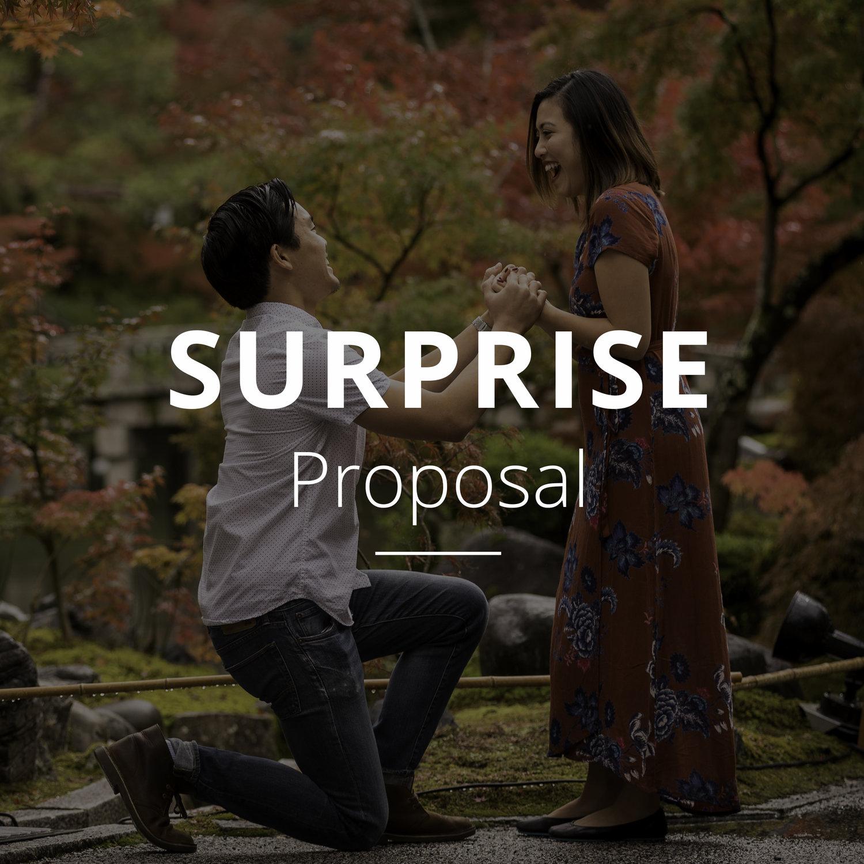 surprise-proposal-.jpg