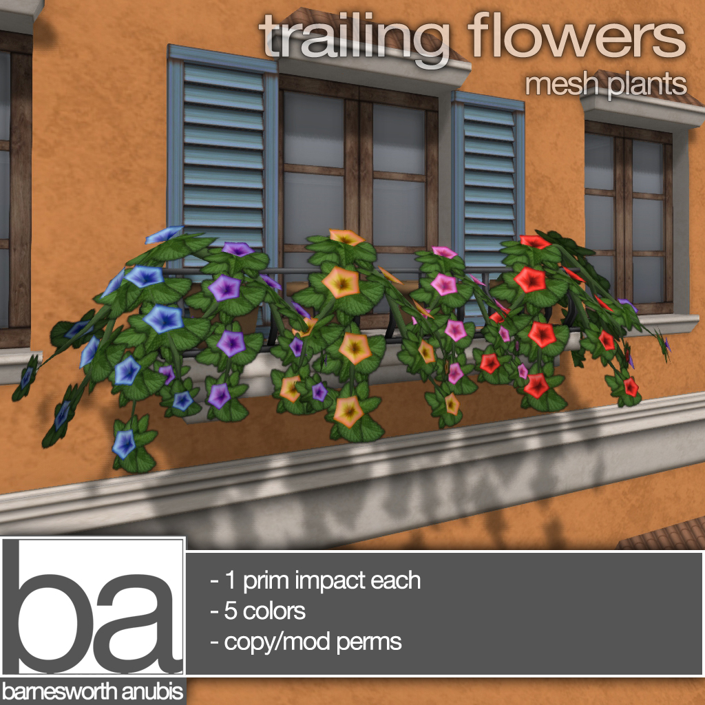 trailingflowers copy.jpg