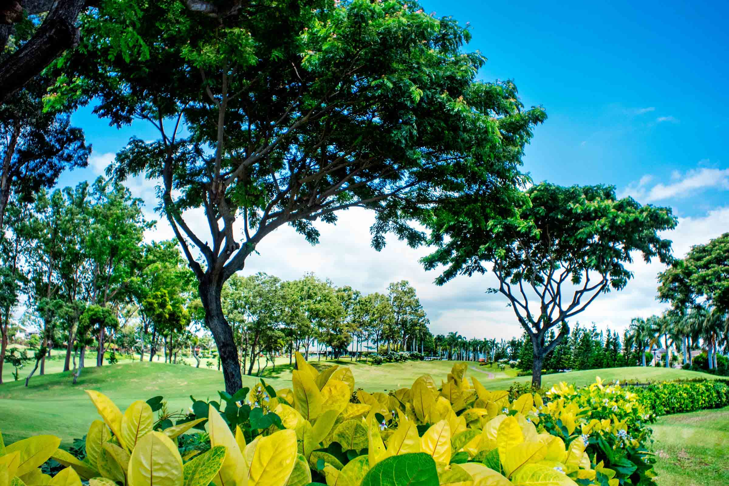 Waikele-Country-Club.jpg