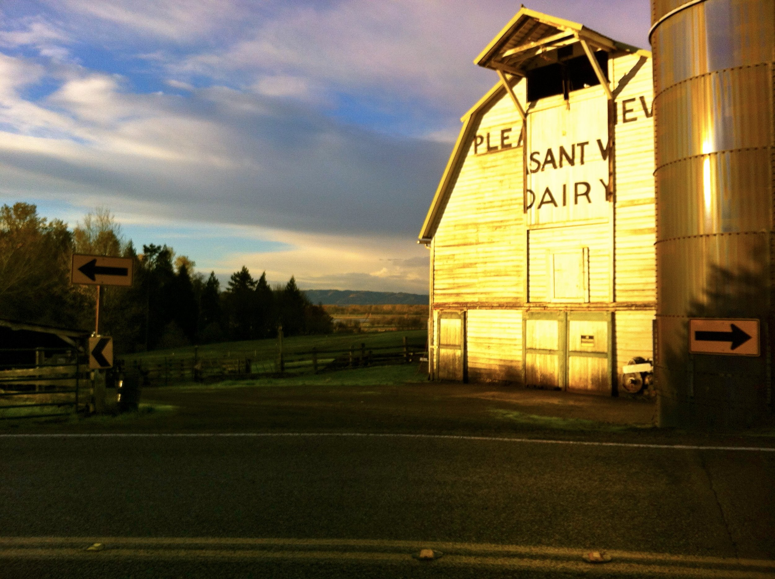 One morning I took this stunner of a photo. MAN I'll miss this old barn.