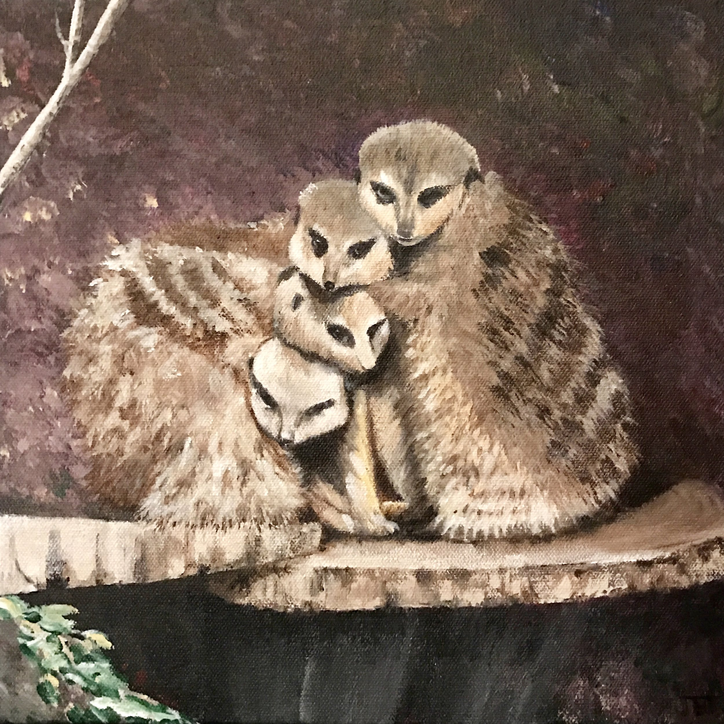 We're all just chilly meerkats on a stump in a zoo. Here's a hug from me.
