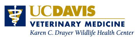 Visit the Karen C. Drayer Wildlife Health Center website.