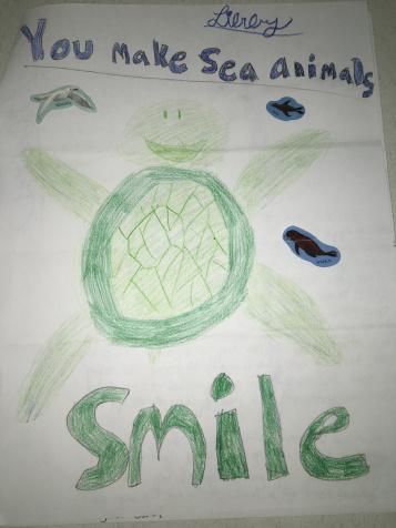 Making sea animals smile.