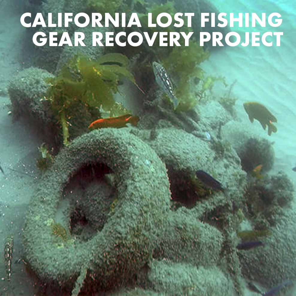 ca-lost-fishing-gear-recovery-project-icon.jpg