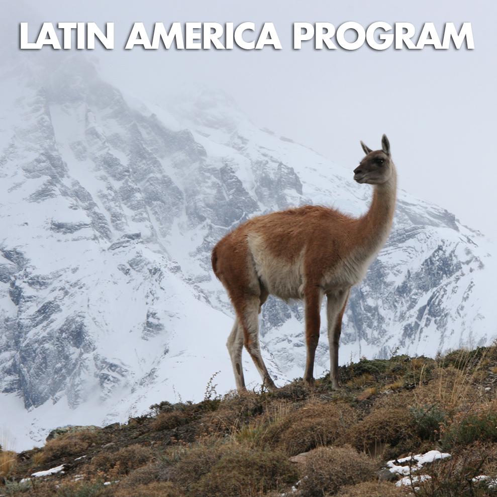LATIN AMERICA-ICON.jpg