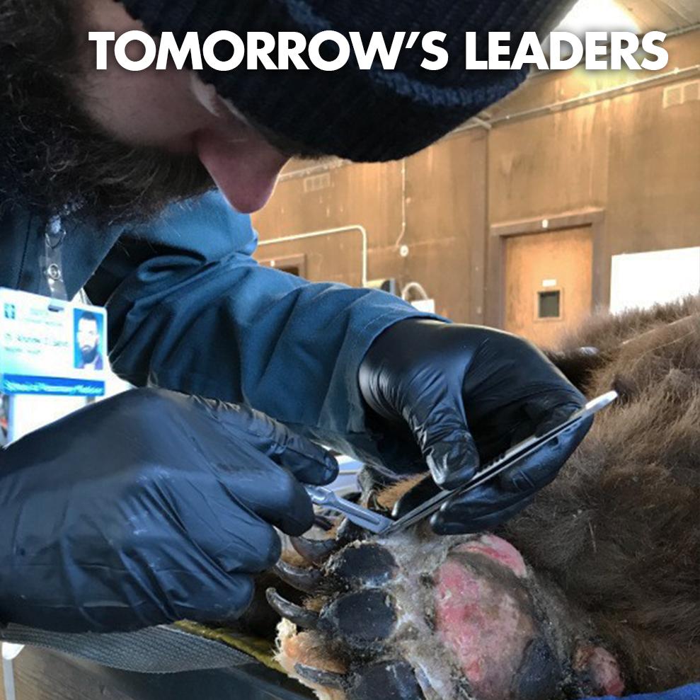 TOMORROW'S LEADERS-ICON.jpg