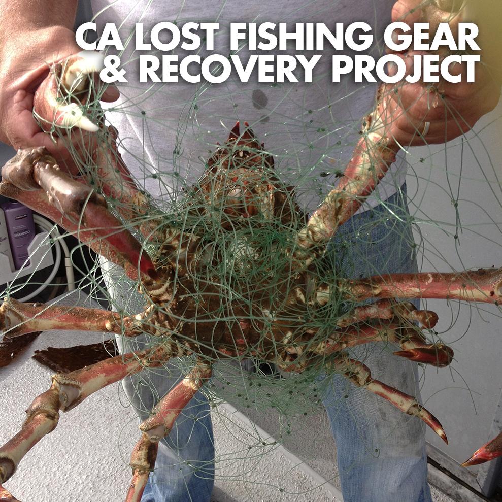 CA LOST FISHING GEAR-ICON.jpg