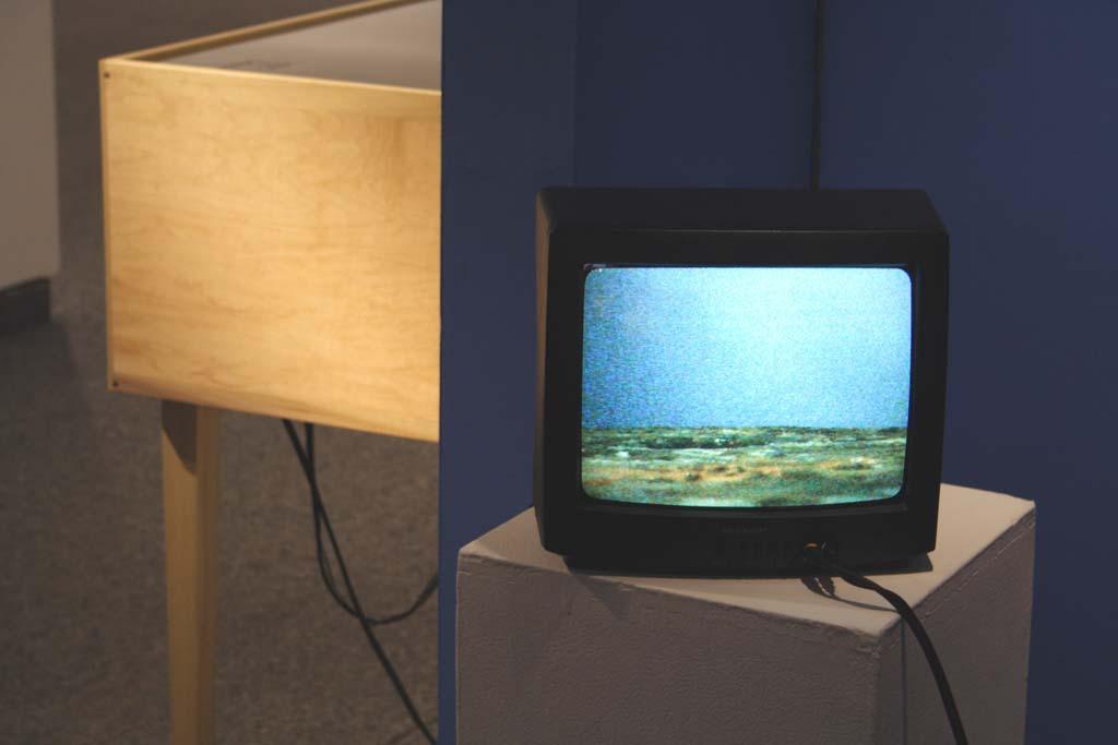 LookingforTTTV2small.jpg