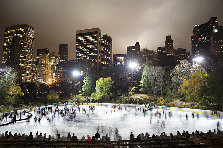 Central Park by Jamie Saunders
