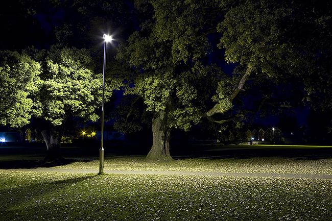 Light by Jamie Saunders