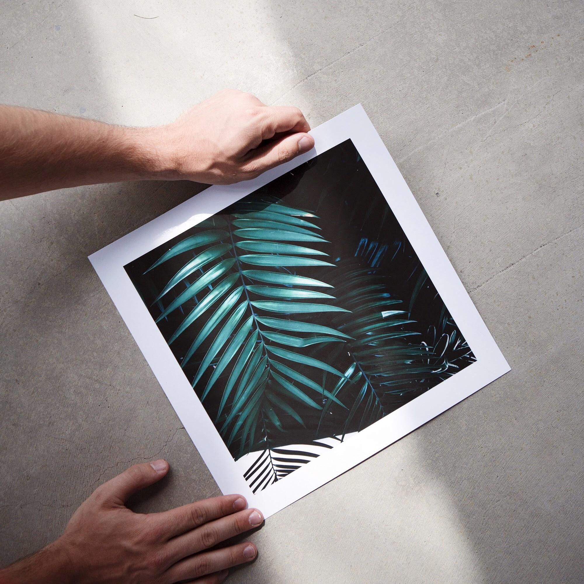 Large Format Fine Art Prints