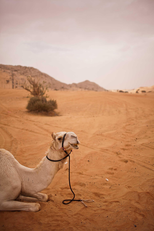 bryce-johnson-photography-actor-world-travel-explorer-photo-49.jpg