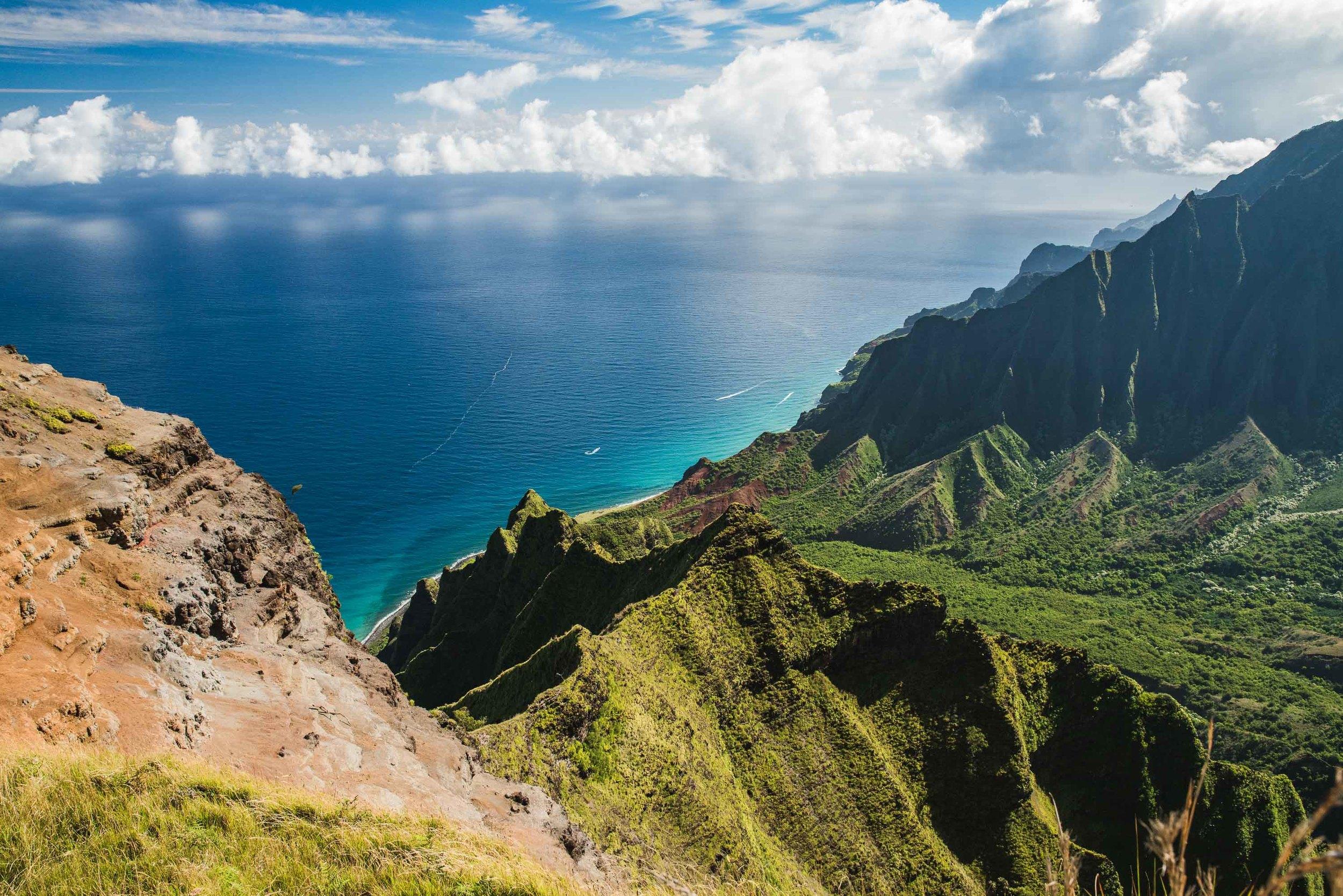 bryce-johnson-kalalau-ridge-kauai-hiking-hammock-palmwood-aloha-exchange-3.jpg