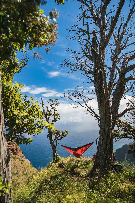 bryce-johnson-kalalau-ridge-kauai-hiking-hammock-palmwood-aloha-exchange-16.jpg