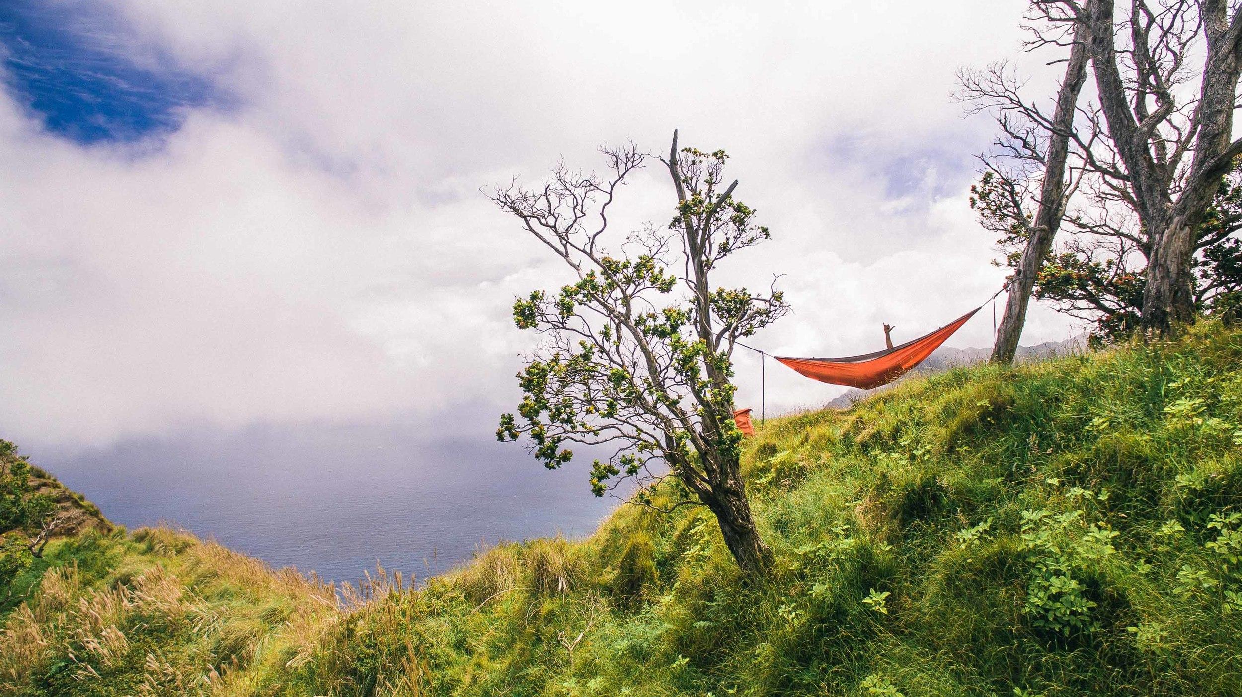 bryce-johnson-kalalau-ridge-kauai-hiking-hammock-palmwood-aloha-exchange-20.jpg