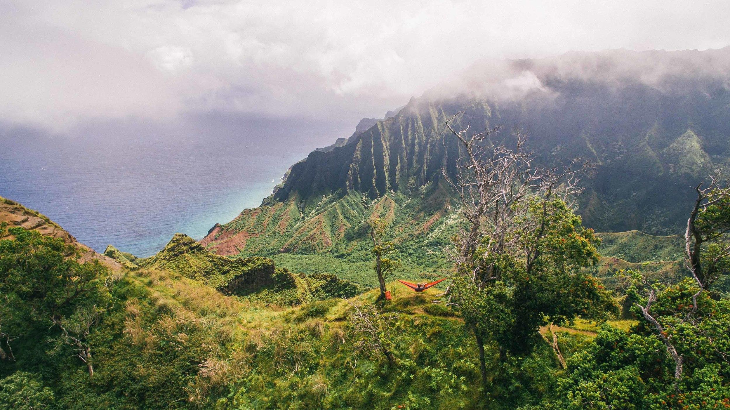 bryce-johnson-kalalau-ridge-kauai-hiking-hammock-palmwood-aloha-exchange-19.jpg