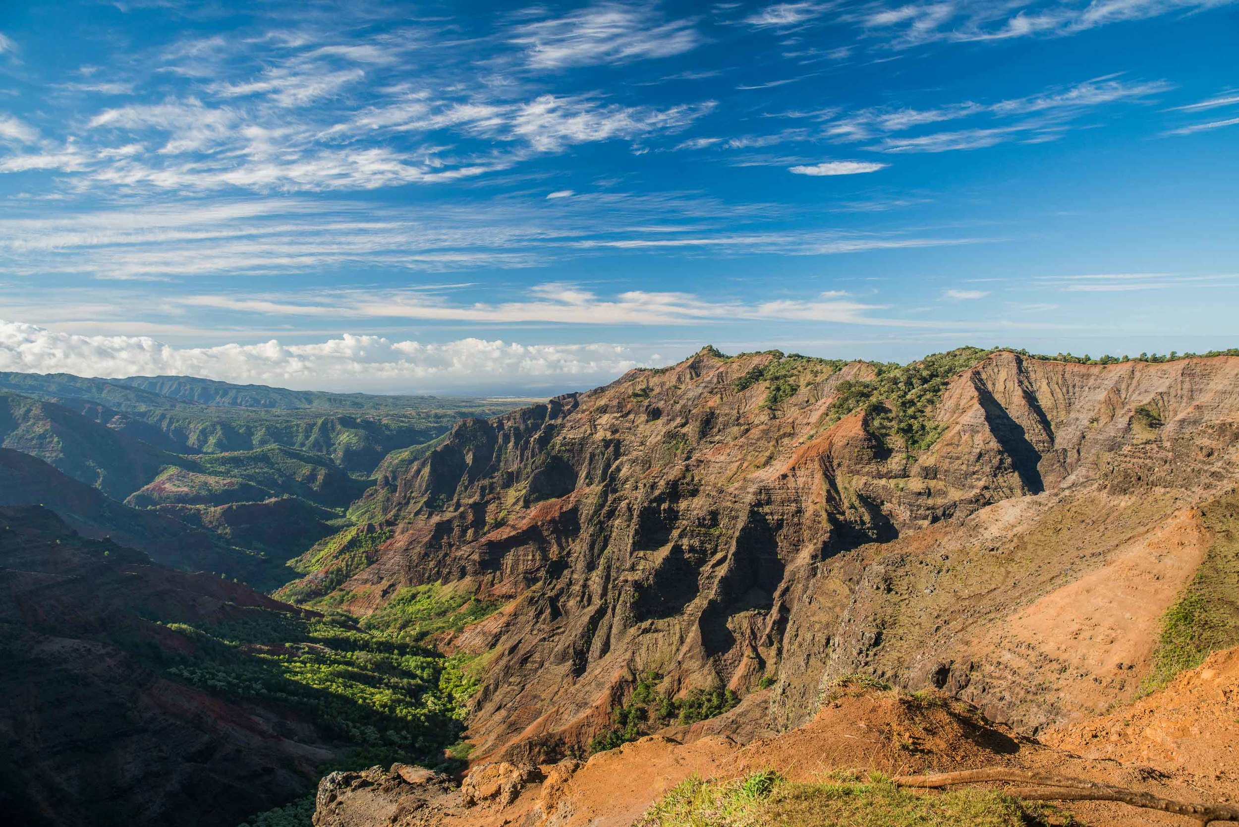 bryce-johnson-kalalau-ridge-kauai-hiking-hammock-palmwood-aloha-exchange.jpg