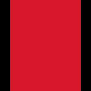 Sichuan Bang Bang Logo Red2.png