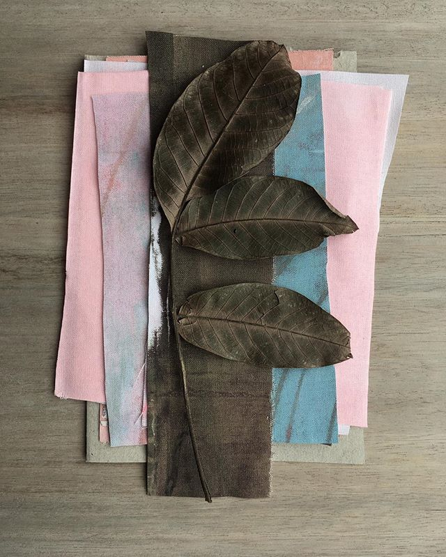 Colour echo colour echo.  Faded pink, blue and dark leaf brown. The resonance of broken colour. #australiancolours