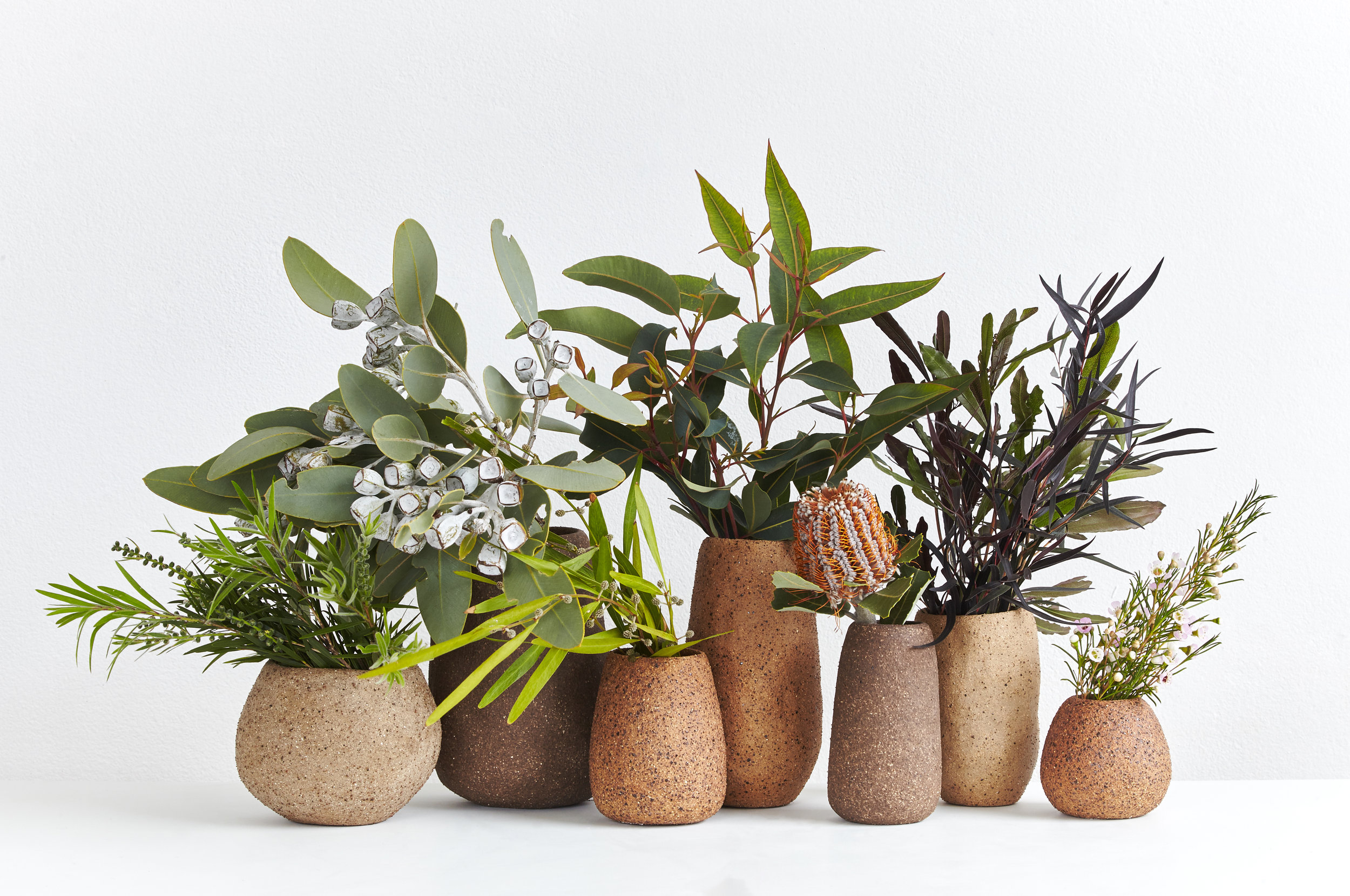 Sweet Nature.Sydney Landscape. 2016. Australian clay and local plants.