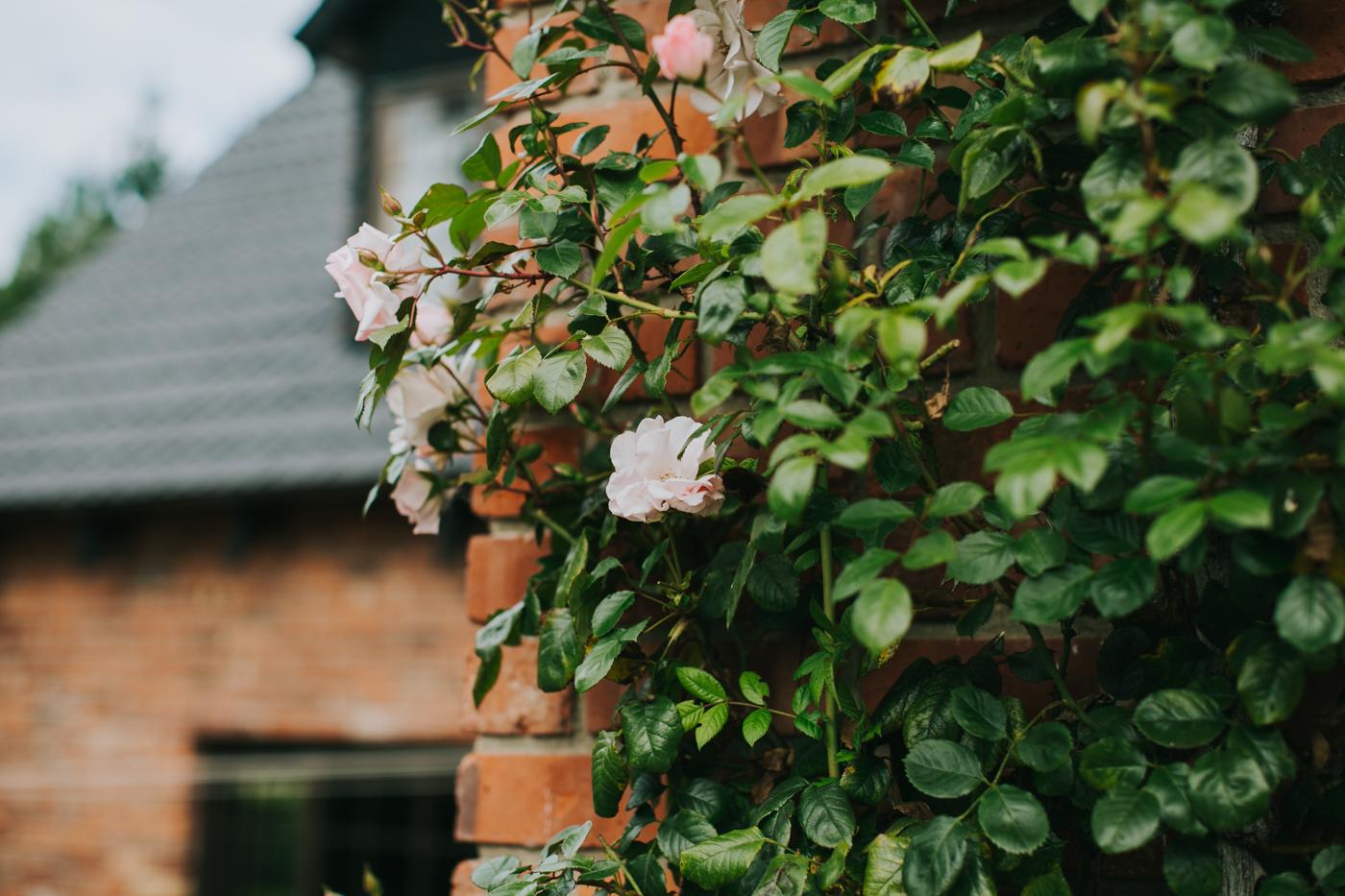 Ariana & Tim - Dunedin, New Zealand Wedding - Destination Wedding - Samantha Heather Photography-71.jpg