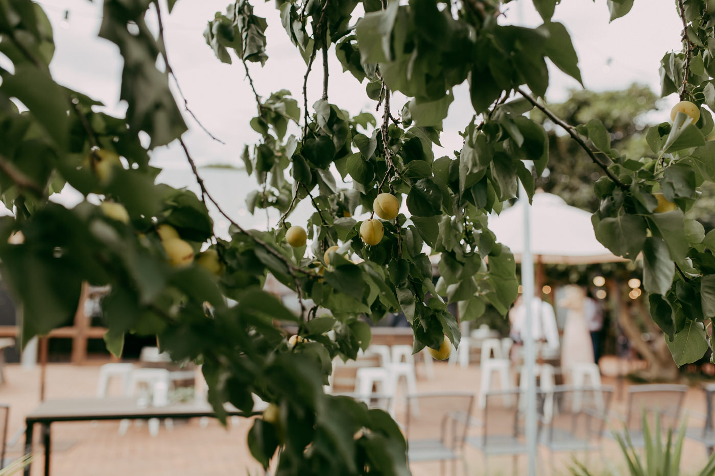 Anthony & Eliet - Wagga Wagga Wedding - Country NSW - Samantha Heather Photography-116.jpg