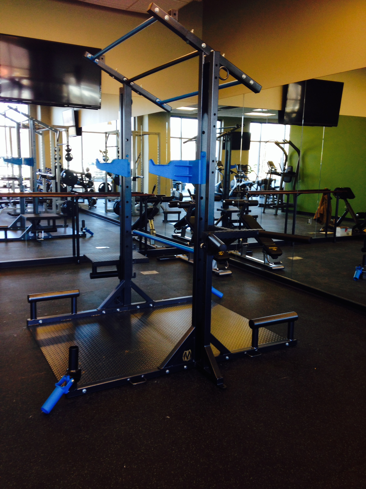 the Movestrong Studio FTS, functional training unit