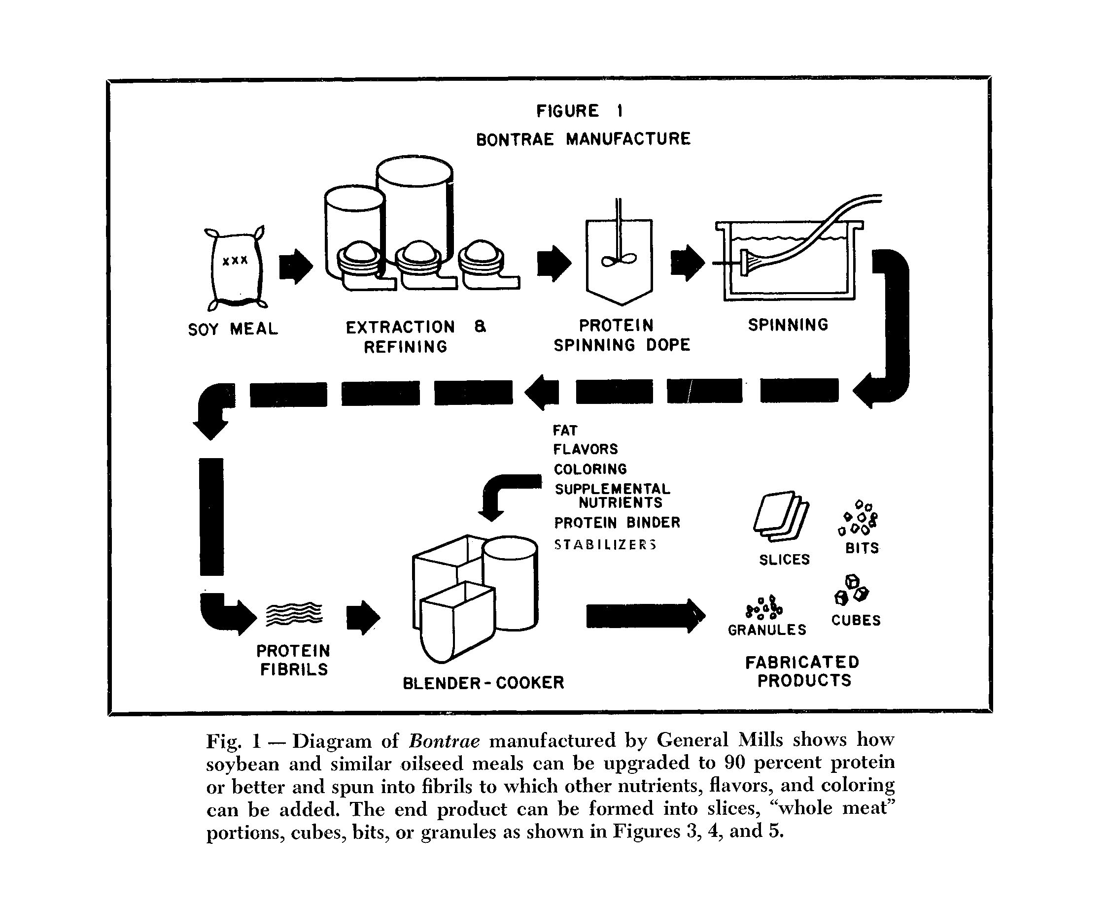 "Bontrae manufacturing flowchart. Bontrae was General Mills' proprietary name for their spun protein substance. [Click to expand.] Image source: A.D. Odell, ""Meat Analogues: A New Food Concept,""  Cornell H.R.A. Quarterly , August 1966. Odell headed General Mills' Isolated Protein research program at their Minneapolis R&D center."
