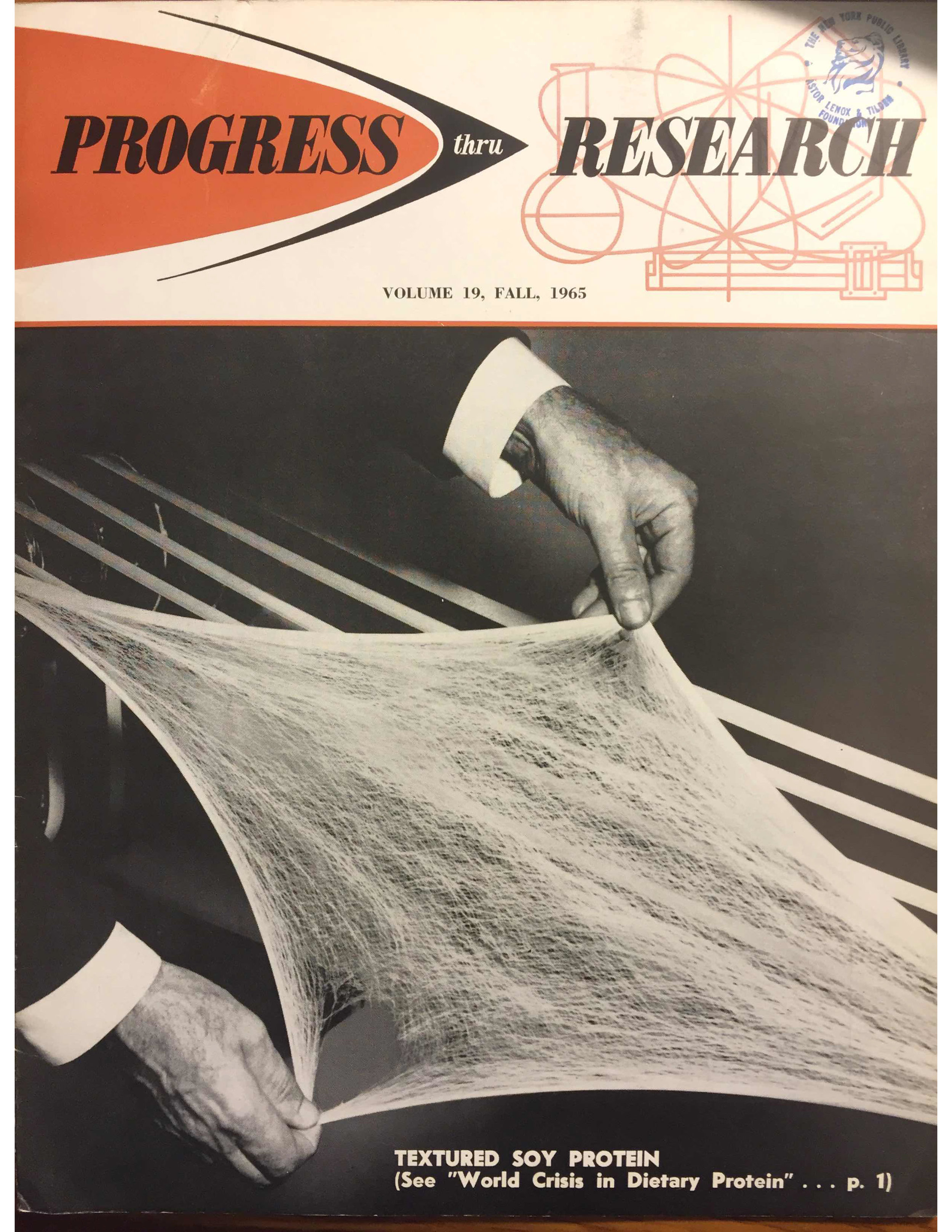 Does this proteinaceous soybean gauze hold the potential to save the world, without sacrificing deliciousness? Read on to find out!