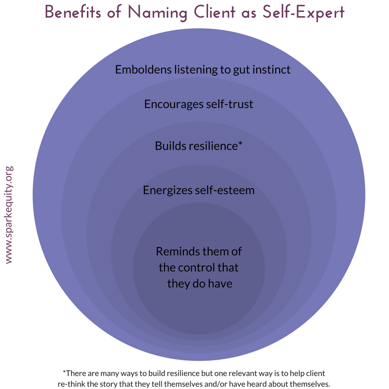 Benefits of Naming Client as Expert (2).png