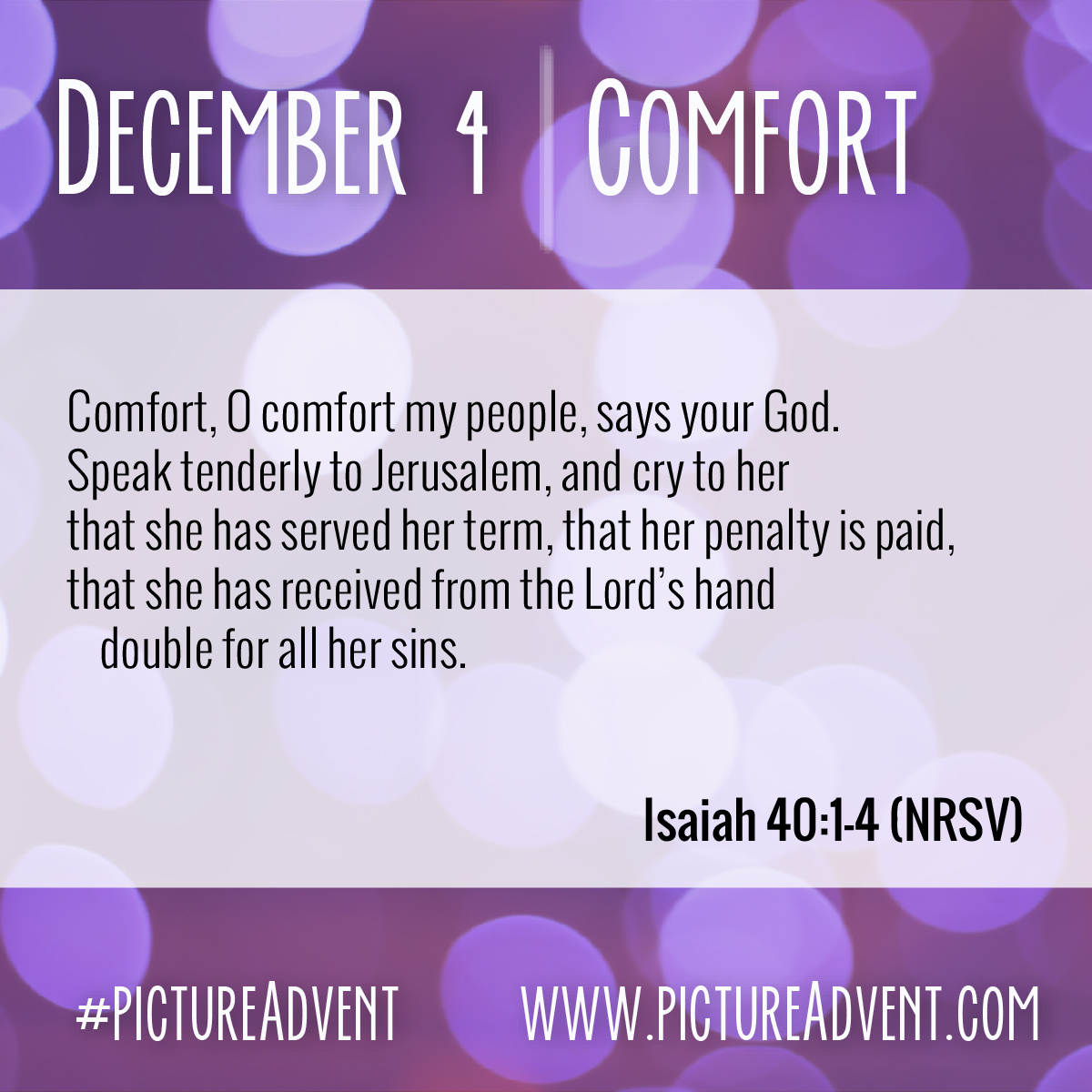 02 Dec 4 Comfort-01.jpg