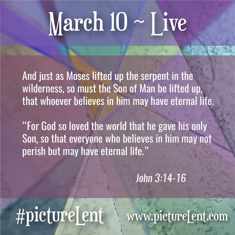 26 Mar 10 Live-01.jpg