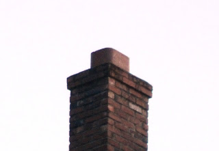Vaux's Swifts prefer tree hollows, but will roost in chimneys like this one--large, open, and tree-hollowesque.