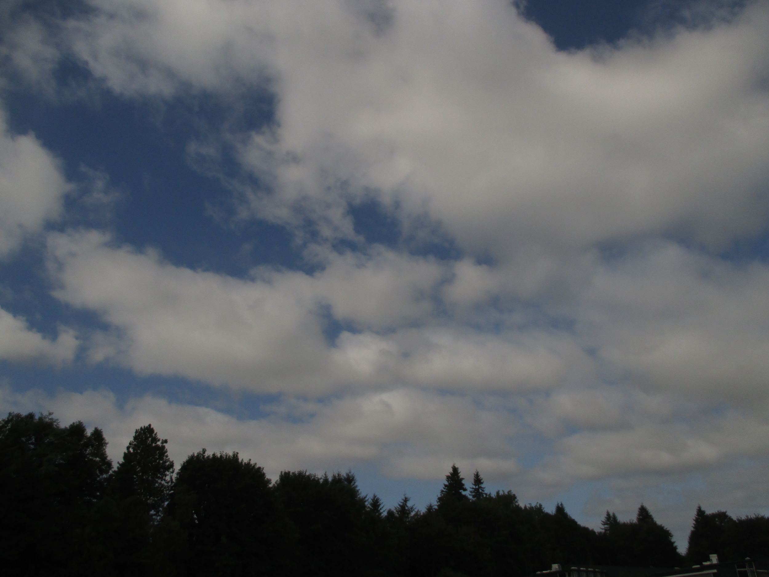 What kinds of clouds are these? Aren't sure? Stratus? Cumulo-something? Do you need a field guide or an app? No.