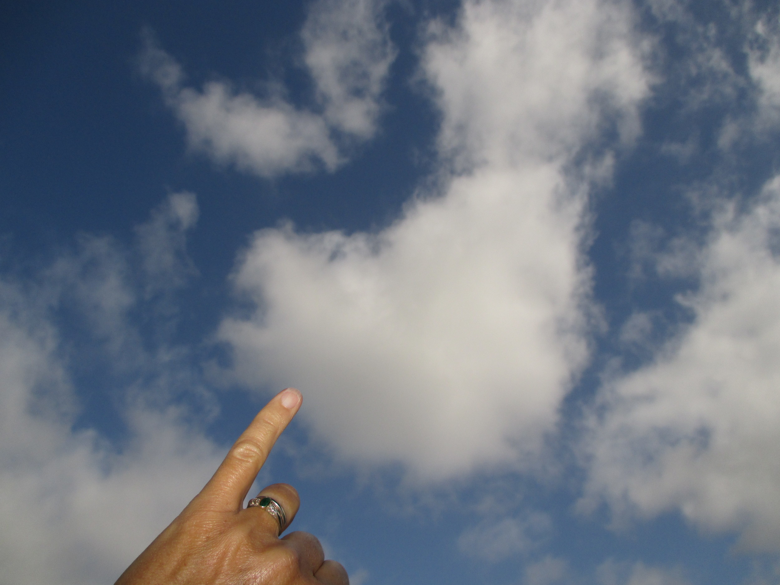 It's not cirrocumulus, higher clouds with cloudlettes the size of your pinky nail (or rice grains some say).