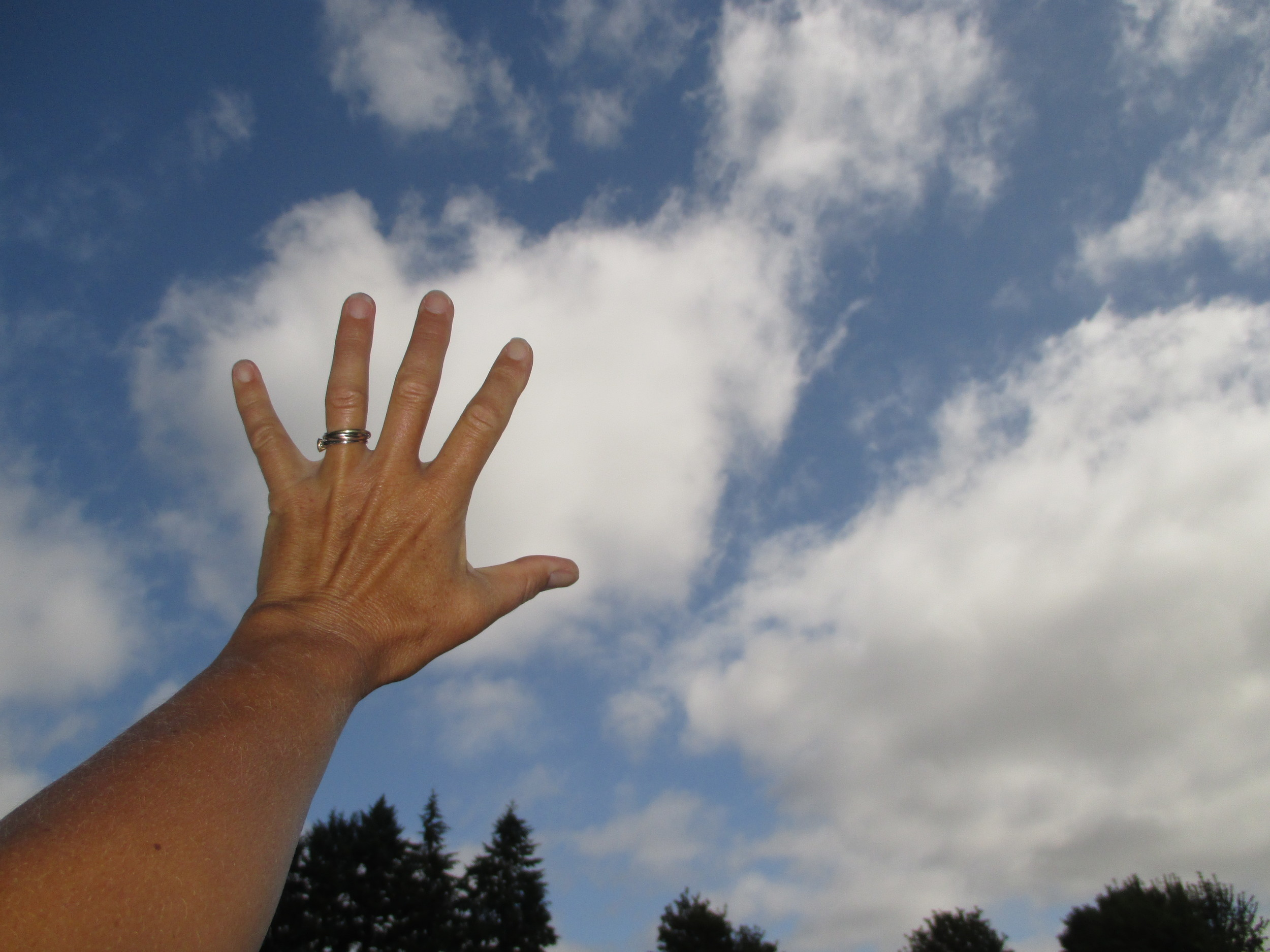 """...these are even bigger than my very large outstretched hand. The clouds don't have well-defined edges, flat bases, or the look of cumulus clouds. This leaves stratocumulus--a large, lumpy cloud that forms at low altitudes and is often formed as layered stratus clouds (fog) rise as they move inland over low hills. These clouds come in a variety known as stratocumulus fractus, which are the smaller (factions) of the stratocumulus cloud as it breaks apart or evaporates.  Sure enough, when I checked the National Weather Service's forecast discussion, the morning cloud cover was described as """"low clouds"""" and """"stratus"""" and were predicted to rise, evaporate, and give way to mostly sunny skies."""