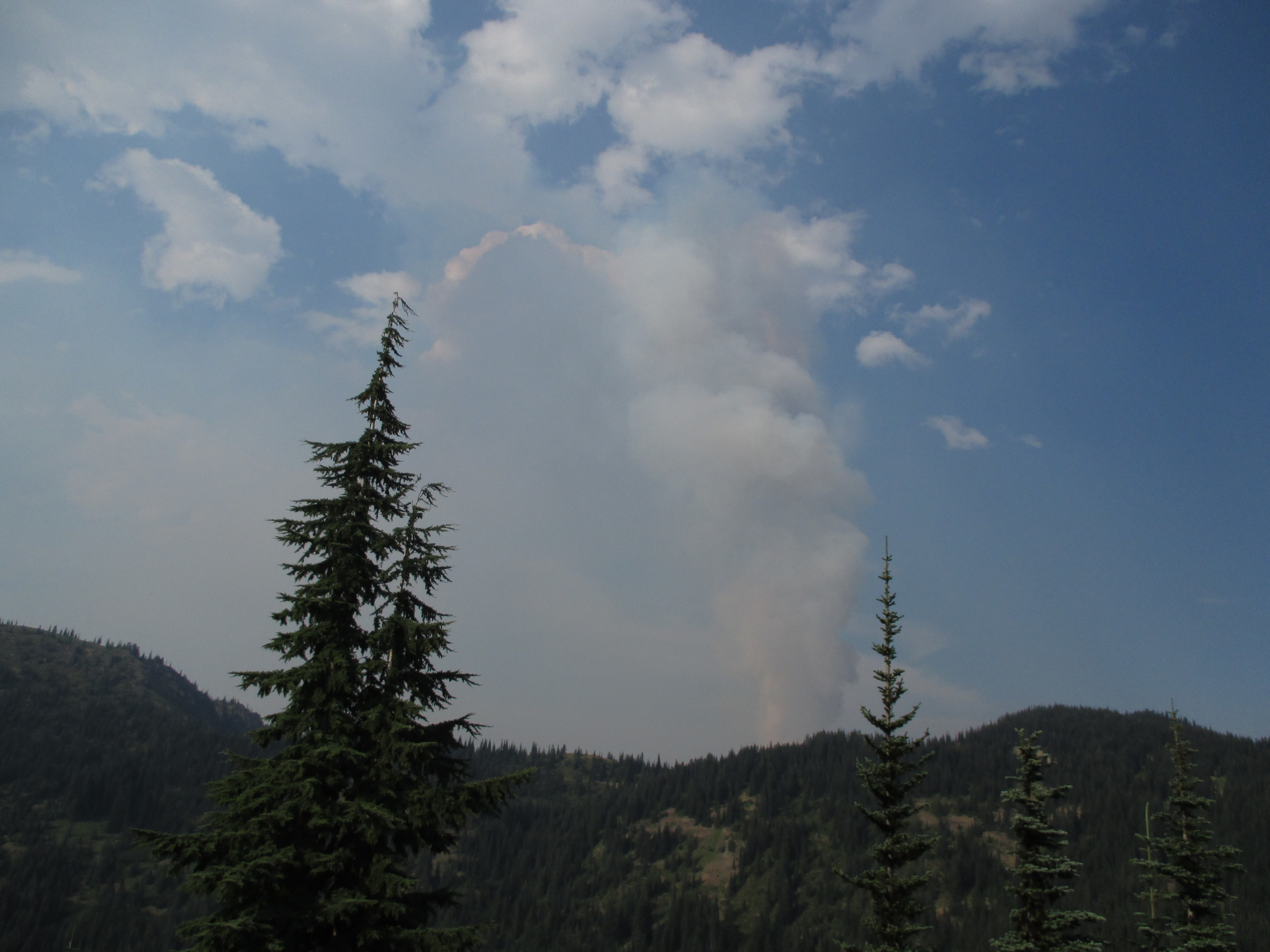 Pyrocumlus clouds forming in the hot, smokey air rising and condensing above the wildfire.  Photo b MM Ruth