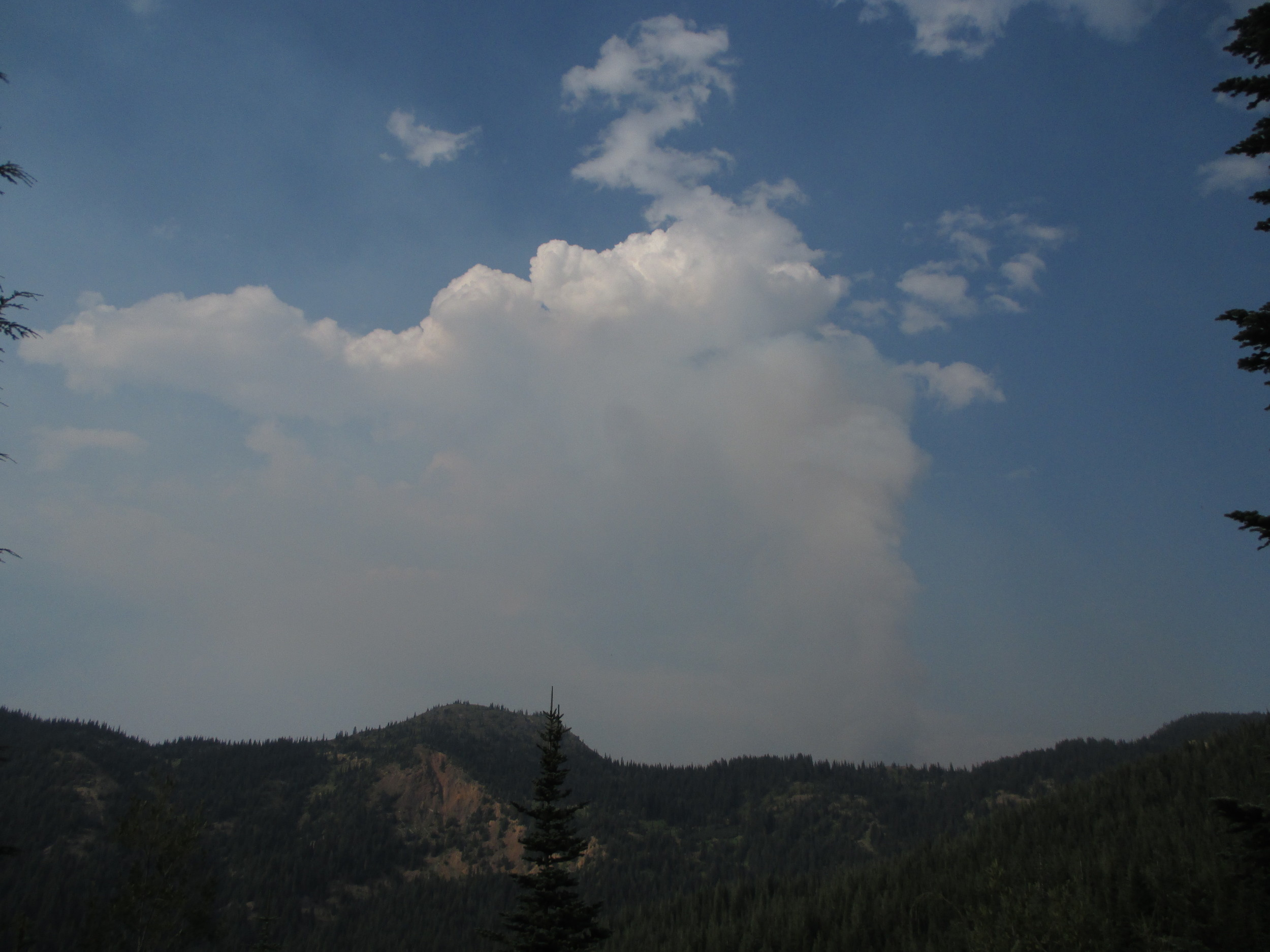 Pyrocumulus clouds--you can see the olumn of gray wildfire smoke in the center of the clouds.  Photo by MM Ruth