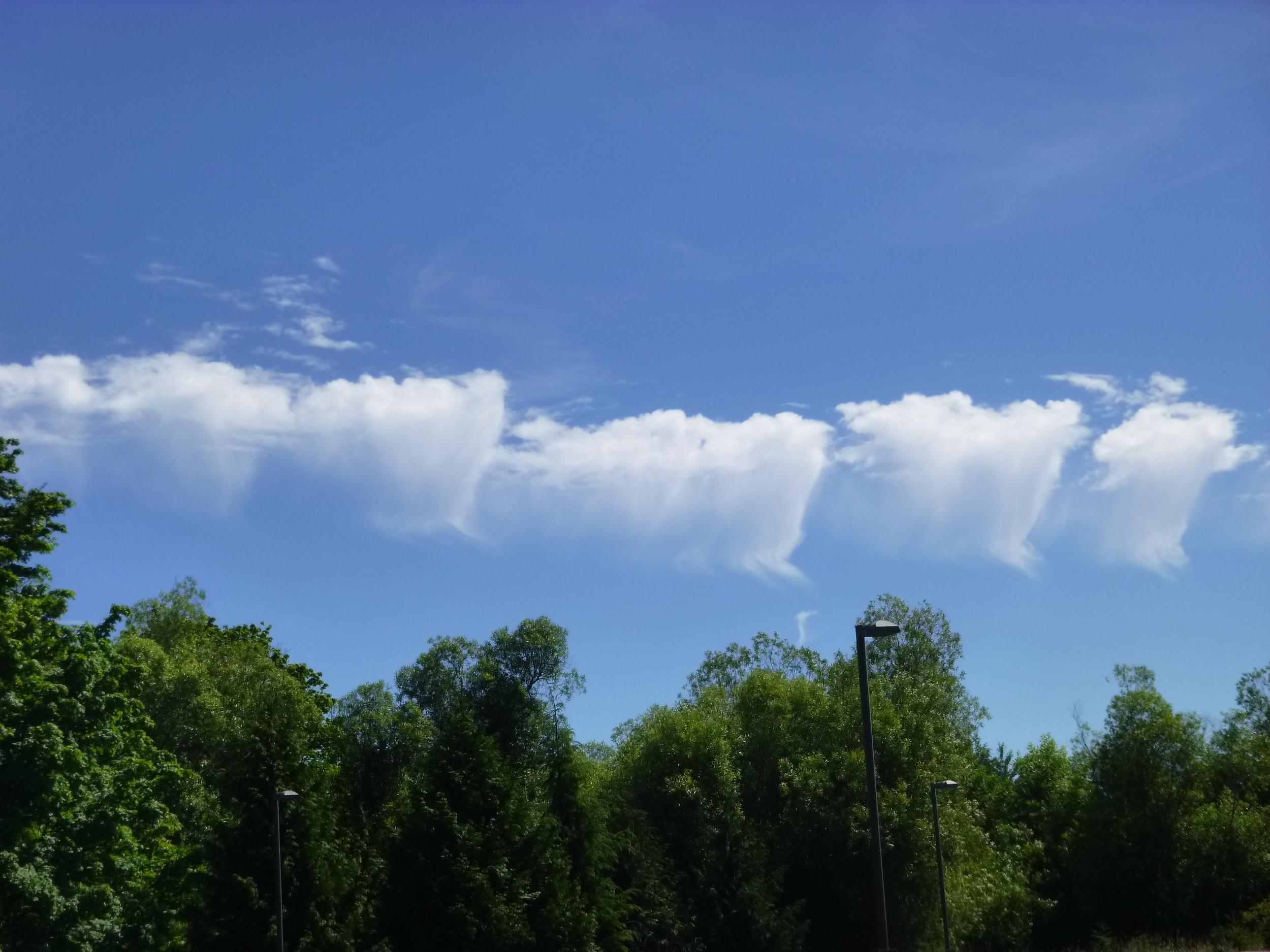 Clouds w verga b.jpg