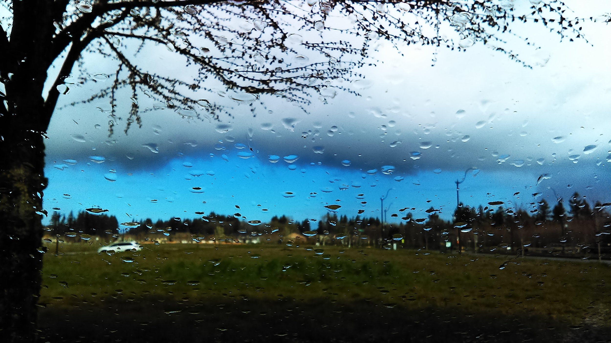 "Believe it or not, we have hundreds of kinds of clouds, not just ""rain clouds."" Learn about nimbostratus (seen through a rainy windshield) and other clouds in A Sideways Look at Clouds."