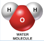 Nor are water molecules ever shaped like Mickey Mouse.