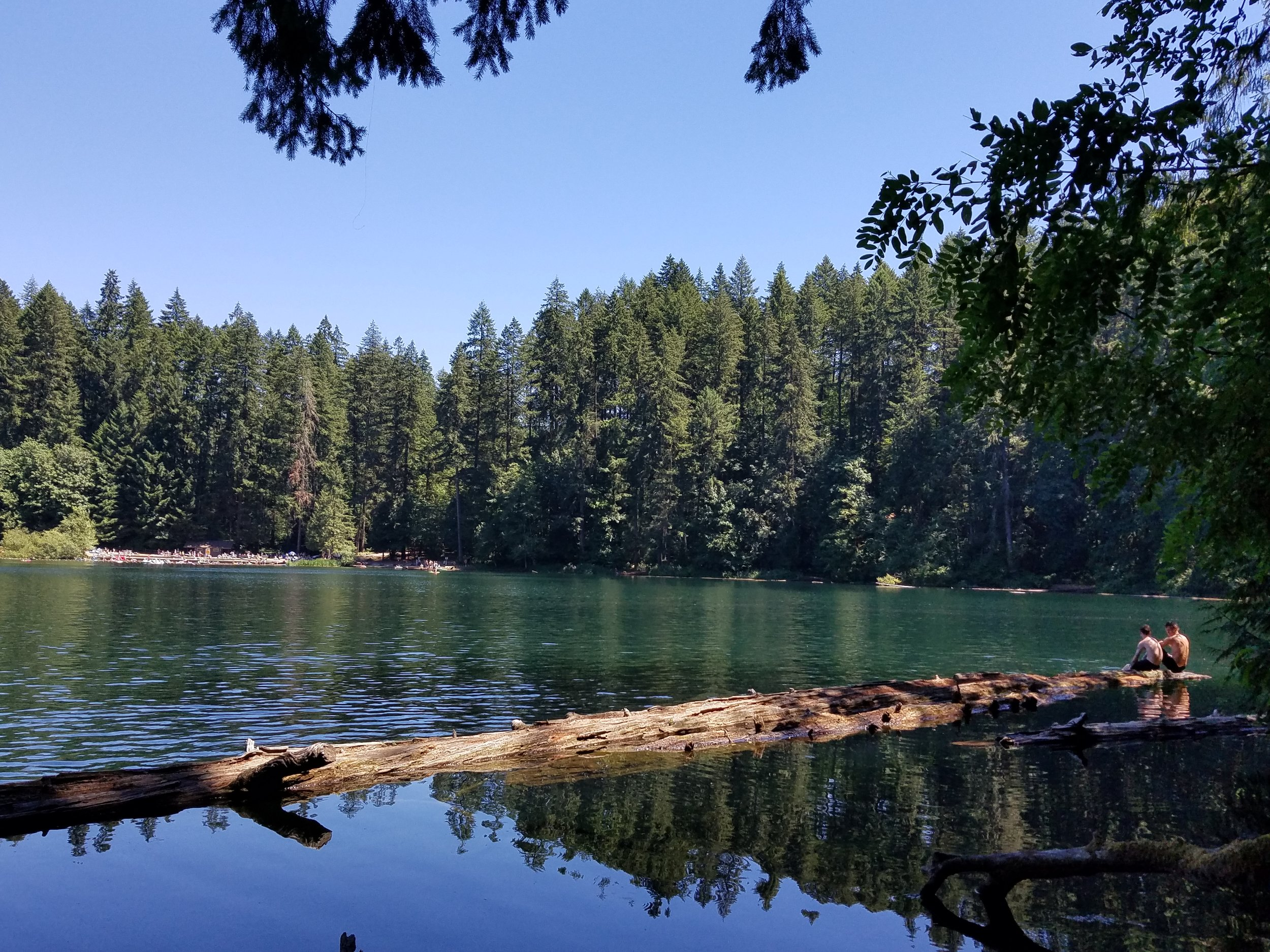 Battle Ground Lake on July 12, 2018 . This lovely 27-acre crater lake is 4 miles northeast of Battle Ground, WA, in Battle Ground State Park. (Photo by M. M. Ruth)