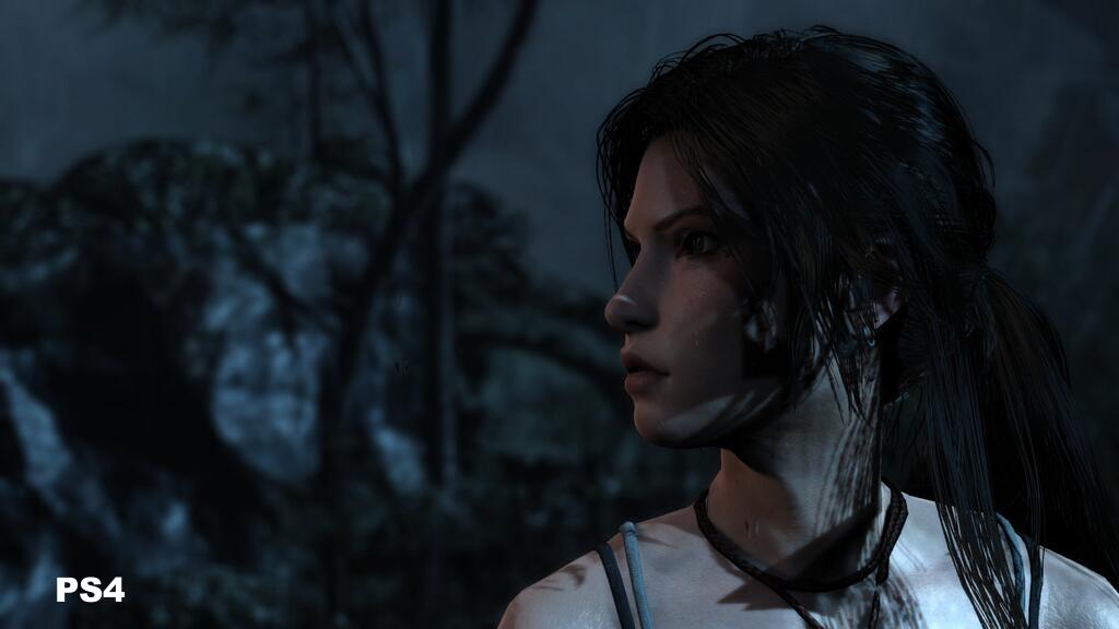 Tomb Raider (PS4) Screen Shot 1_26_14, 12.24 PM.png