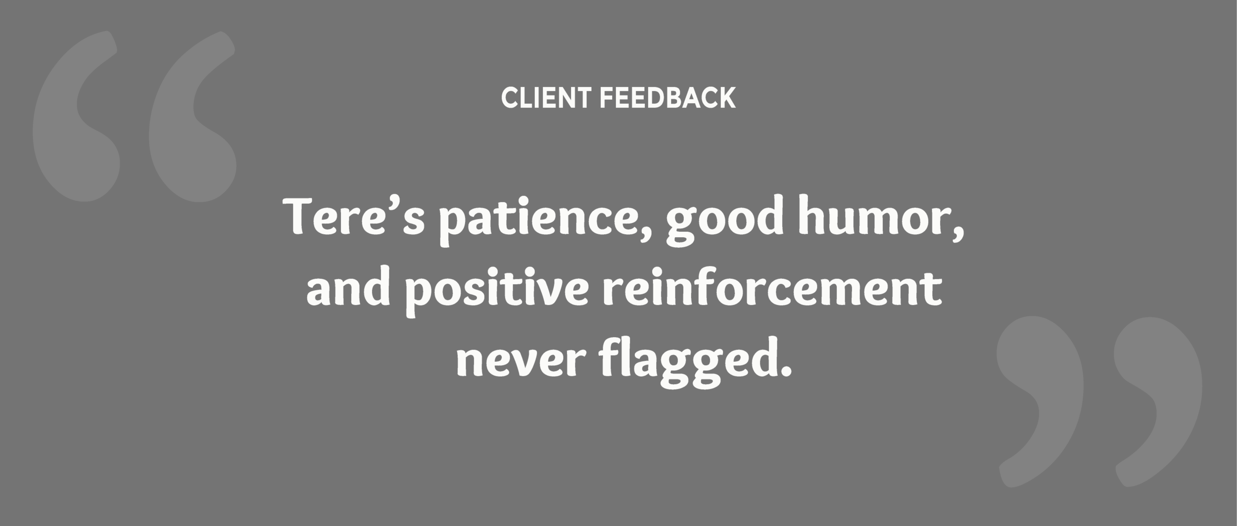 about-client-feedback5.png