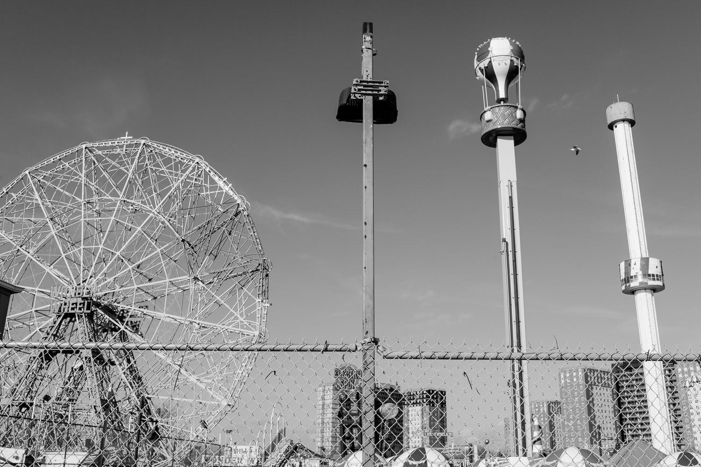 Coney-12.jpg