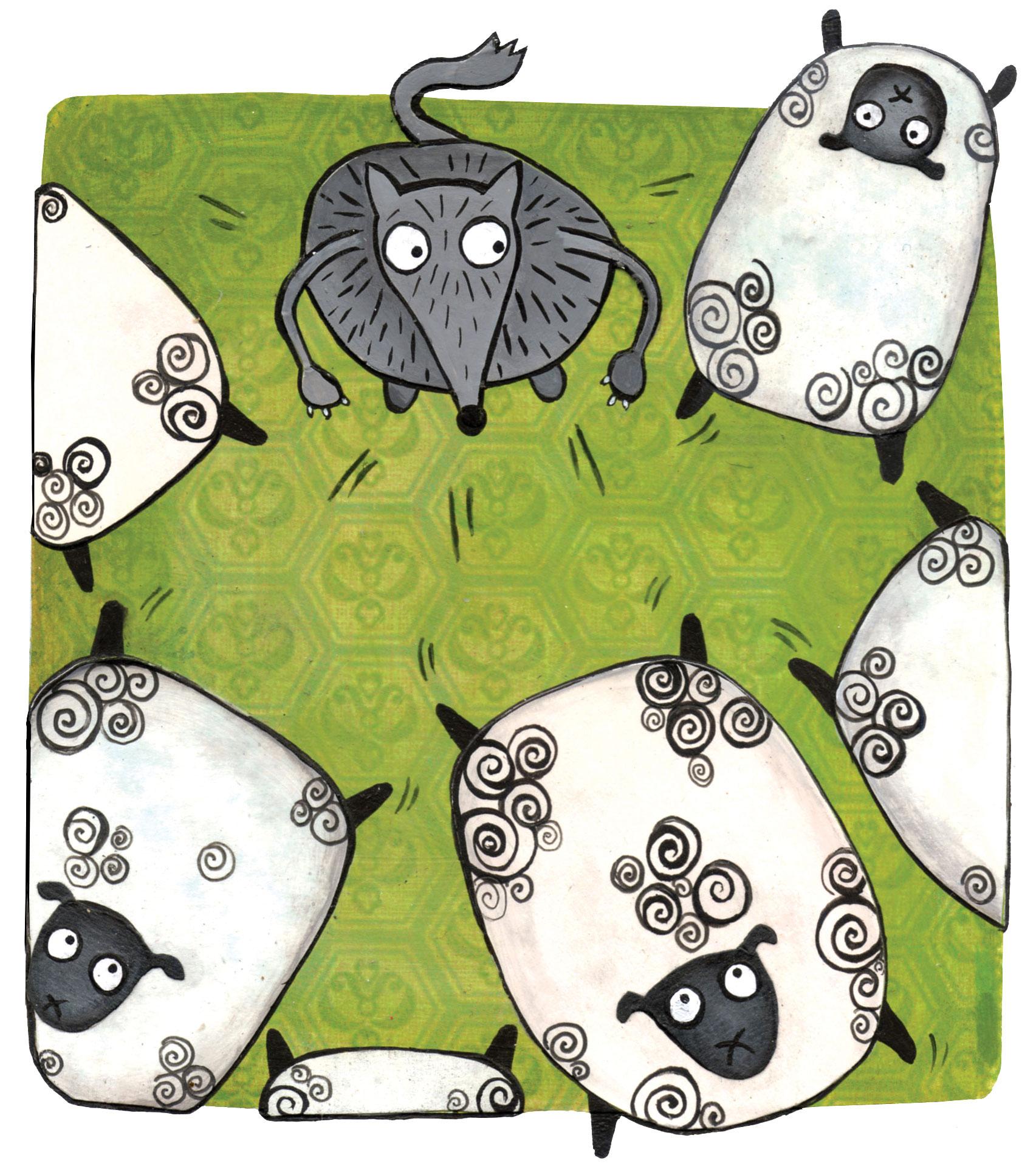 ariel-sheep-web.jpg
