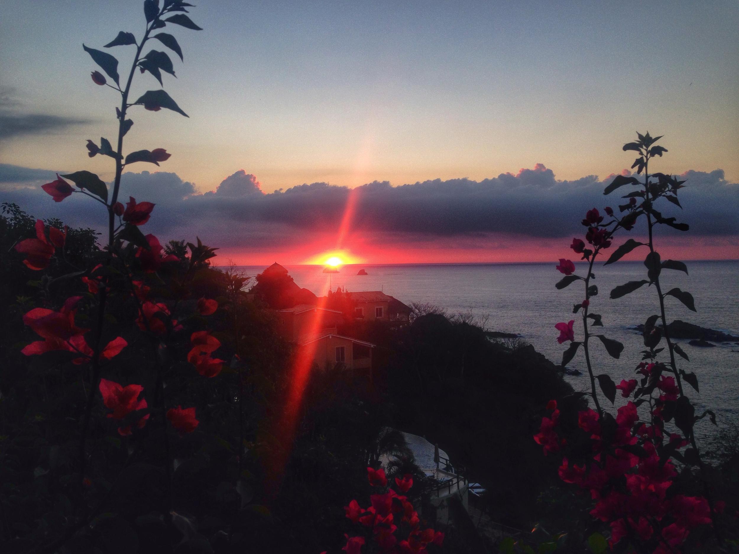 Zoa Sunrise, Mazunte