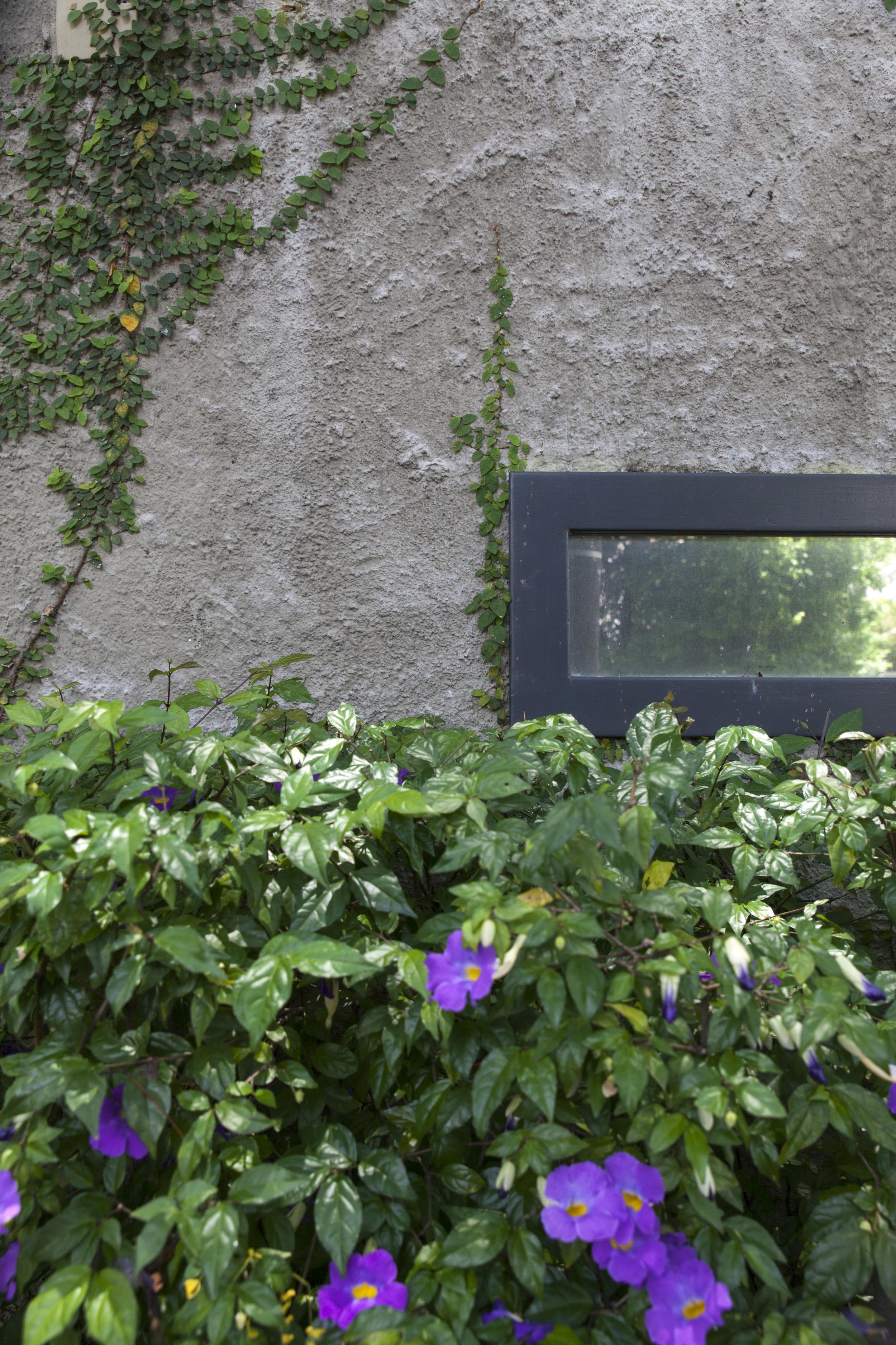GardenOfEurope_#9_JonathanUssingMagyar_2015-9328.jpg